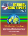 2015 National Gang Report NGR - Violent Street And Prison Gangs Outlaw Motorcycle Gangs OMG Central American And Mexican Transnational Criminal Organizations MTCOs Drugs Use Of Social Media