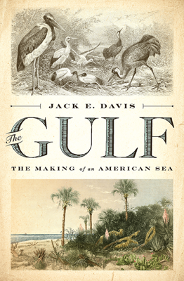 The Gulf: The Making of An American Sea - Jack E. Davis book