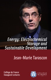Energy Electrochemical Storage And Sustainable Development