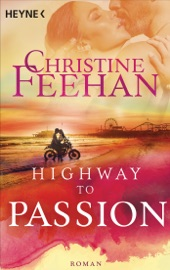 Highway to Passion PDF Download