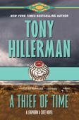 Download and Read Online A Thief of Time