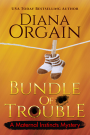 Bundle of Trouble - Diana Orgain book summary