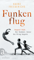 Hauke Friederichs - Funkenflug artwork