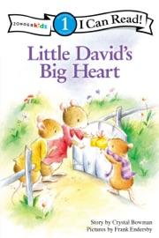 Little David S Big Heart