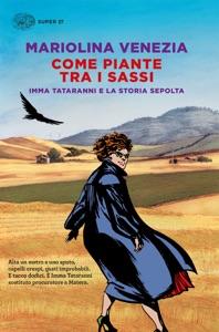 Come piante tra i sassi da Mariolina Venezia