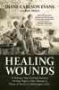 Healing Wounds: A Vietnam War Combat Nurse's 10-Year Fight To Win Women A Place Of Honor In Washington, D.C.
