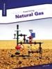 Examining Natural Gas