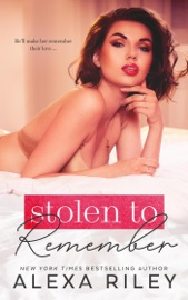 Stolen to Remember PDF Download