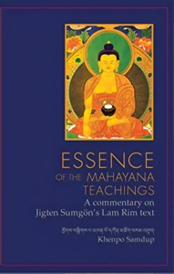 Essence of the Mahayana Teachings Book Cover