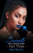 Secrets Of A Sugar Baby 3