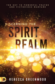 Discerning the Spirit Realm Book Cover