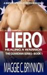 Hero Healing A Warrior Book 1
