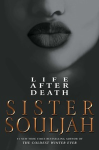 Life After Death Book Cover