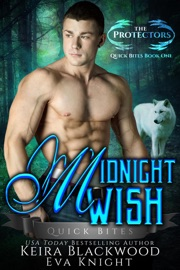 Midnight Wish PDF Download