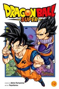 Dragon Ball Super, Vol. 12 Book Cover