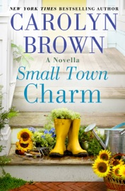 Small Town Charm PDF Download