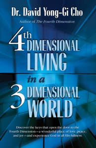 4th Dimensional Living in a 3 Dimensional World Book Cover