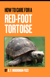 How To Care For A Red-foot Tortoise