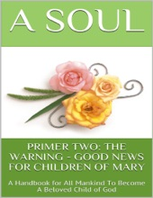Primer Two: The Warning - Good News For Children Of Mary: A Handbook For All Mankind To Become A Beloved Child Of God