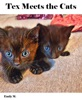 Big Tex & Friends: Tex Meets The Cats