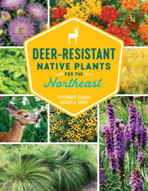 Deer-Resistant Native Plants for the Northeast