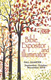 Bible Expositor and Illuminator book