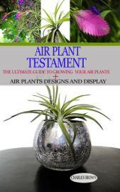 Air Plant Testament: the Ultimate Guide to Growing your air Plant + air Plant Design and Display