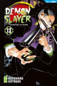Demon Slayer - Kimetsu no yaiba 13 Book Cover