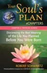 Your Souls Plan EChapters - Chapter 2 Physical Illness