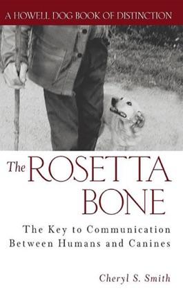 The Rosetta Bone image