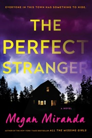 The Perfect Stranger book summary