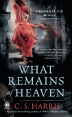 What Remains of Heaven Book Cover