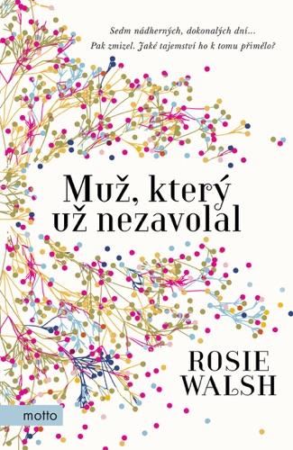 Rosie Walsh - Muž, který už nezavolal