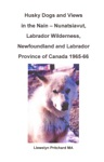 Husky Dogs And Views In The Nain Nunatsiavut Labrador Wilderness Newfoundland And Labrador Province Of Canada 1965-66