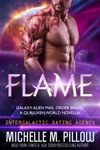 Flame A Qurilixen World Novella