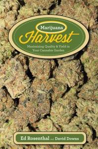 Marijuana Harvest