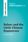 Balzac And The Little Chinese Seamstress By Dai Sijie Book Analysis