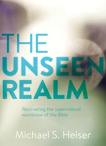 The Unseen Realm Book Cover