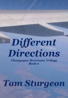 Different Directions The Champagne Hurricane Trilogy - Book 2
