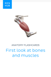 Anatomy flashcards: First look at bones and muscles