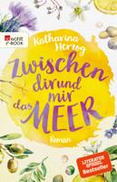 Katharina Herzog - Zwischen dir und mir das Meer artwork