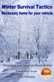Winter Survival Tactics: Necessary Items For Your Vehicle
