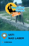 Vacation Goose Travel Guide Usti Nad Labem Czechia