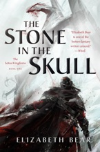 The Stone In The Skull