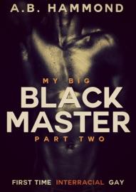 MY BIG BLACK MASTER: BOOK TWO