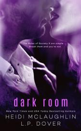 Dark Room - L.P. Dover & Heidi McLaughlin book summary