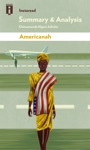Guide To Chimamanda Ngozi Adichies Americanah