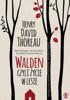 Henry David Thoreau - Walden artwork