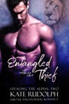 Entangled With The Thief A Shifter Paranormal Romance