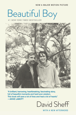 Beautiful Boy - David Sheff book